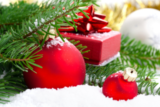 Christmas Colors Red And Green Picture for Android, iPhone and iPad