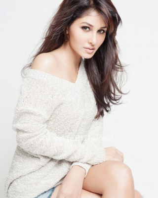 Pooja Chopra Miss India Wallpaper for Nokia Asha 306