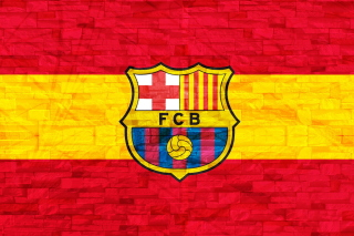 FC Barcelona Background for Samsung I9080 Galaxy Grand