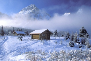 Christmas Winter Picture for Desktop 1280x720 HDTV