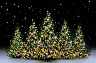 Christmas Trees in Light Background for Android, iPhone and iPad