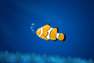 Little Yellow Fish Background for Android, iPhone and iPad