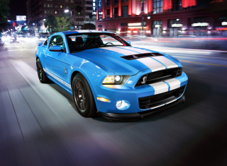 Free Shelby Mustang Picture for 1280x960