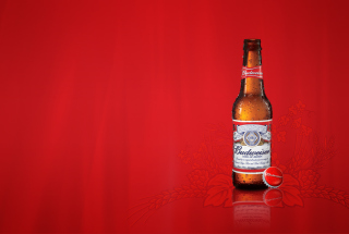 Free Budweiser Beer Picture for Android, iPhone and iPad