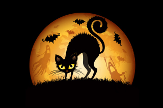 Scary Black Cat Background for Android, iPhone and iPad