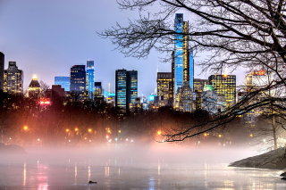 Free New York Central Park Picture for Android, iPhone and iPad