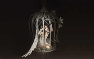 Angel In Cage Wallpaper for Android, iPhone and iPad