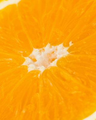 Macro Orange Wallpaper for Nokia X3