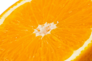 Macro Orange Wallpaper for Android, iPhone and iPad