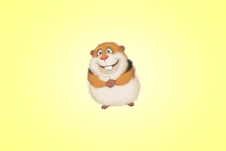 Funny Guinea Pig Picture for Android, iPhone and iPad