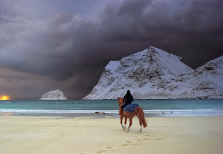 Horse Riding On Beach Picture for Android, iPhone and iPad
