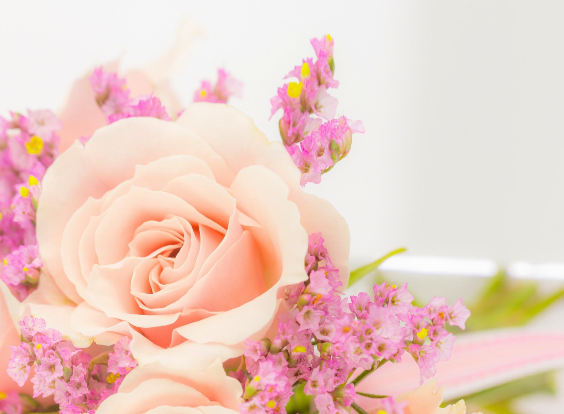 Открытки с цветами на рабочий стол