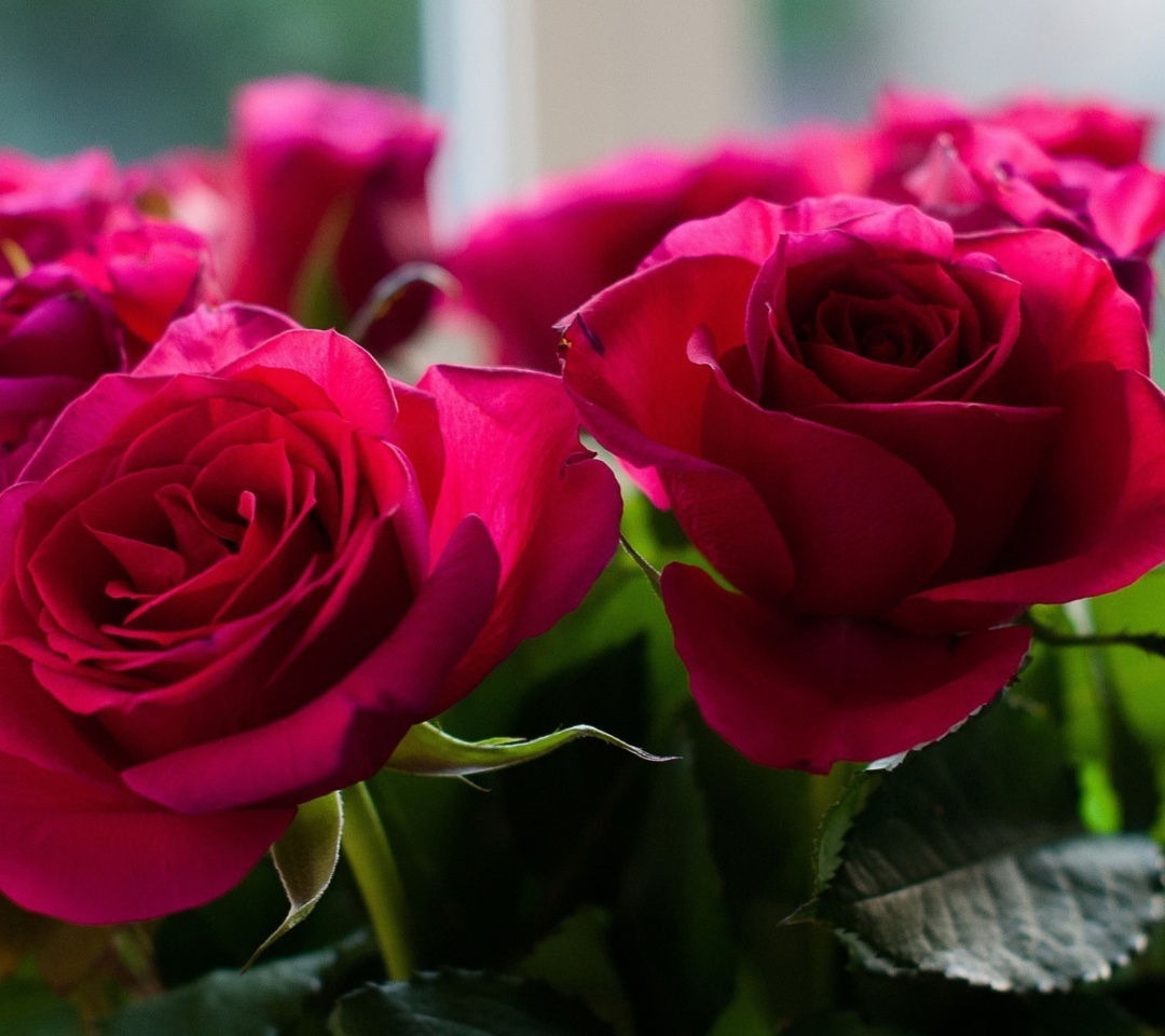 Screenshot №1 pro téma Picture of bouquet of roses from garden 1080x960