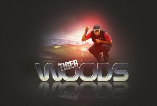 Free Tiger Woods Picture for Android, iPhone and iPad