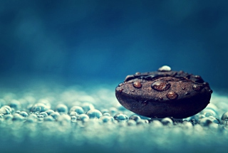Coffee Bean Macro Background for Android, iPhone and iPad