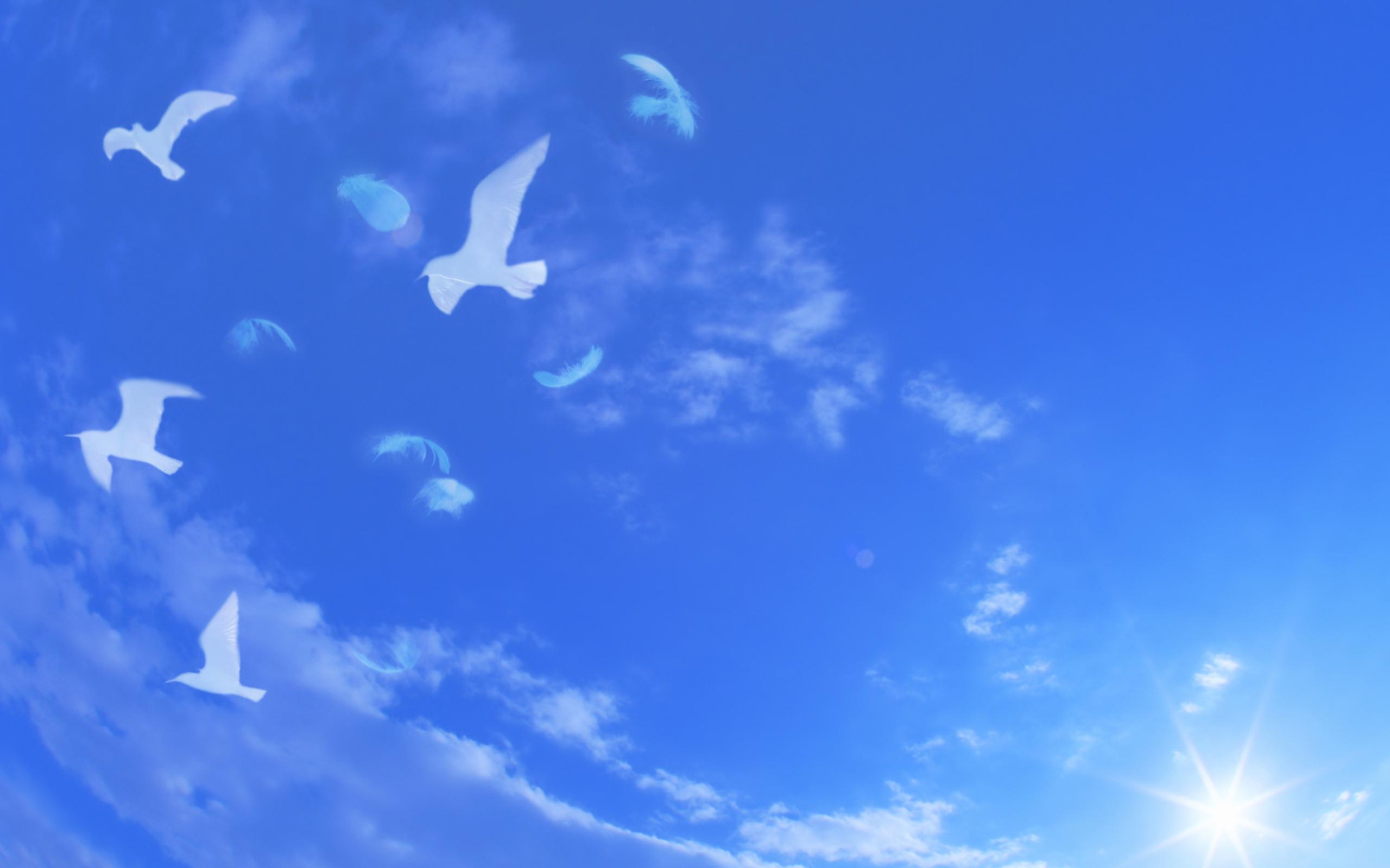 Открытки подруге, картинки с надпись хочу на небеса