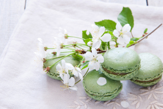 Spring Style French Dessert Macarons Picture for Android, iPhone and iPad