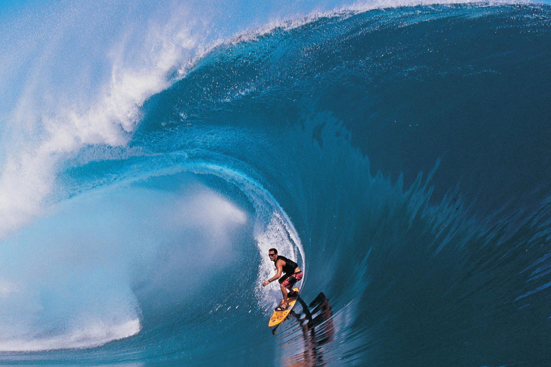 Серфингист на гребне волны бесплатно
