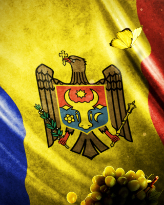 Moldova Flag Background for HTC Titan