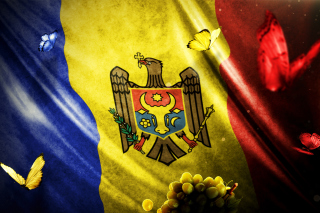 Moldova Flag Background for Android 480x800