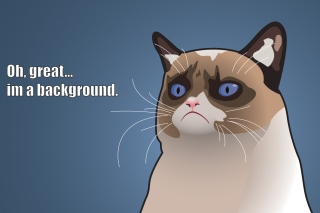 Kostenloses Grumpy Cat, Oh Great Im a Background Wallpaper für Samsung Galaxy Ace 3