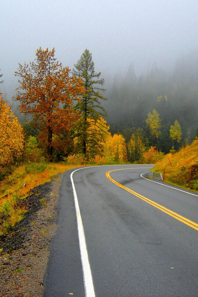 Screenshot №1 pro téma Autumn Sodden Road 640x960
