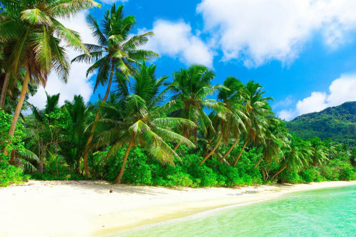 Tropical Paradise Beach Hd Wallpaper For Nexus 7 Screens: Tropical Landscape And Lagoon HD Wallpaper For Android