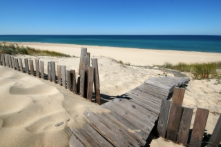 Beach Dunes in Northwest Indiana sfondi gratuiti per cellulari Android, iPhone, iPad e desktop
