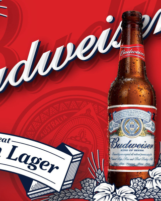 Budweiser Lager Beer Brand Background for Nokia Asha 311