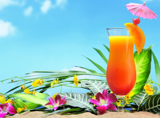 Free Tropical Cocktails Picture for Android, iPhone and iPad
