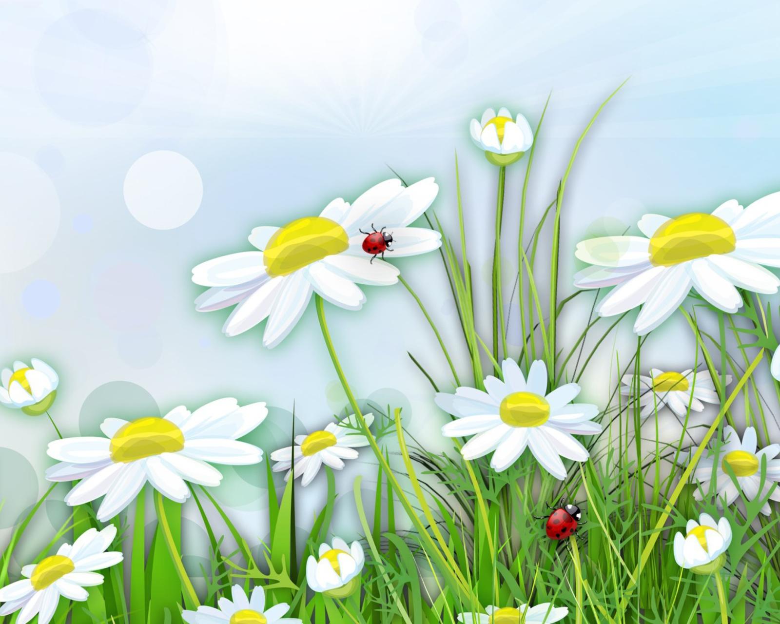 Картинки цветы на поляне для детей