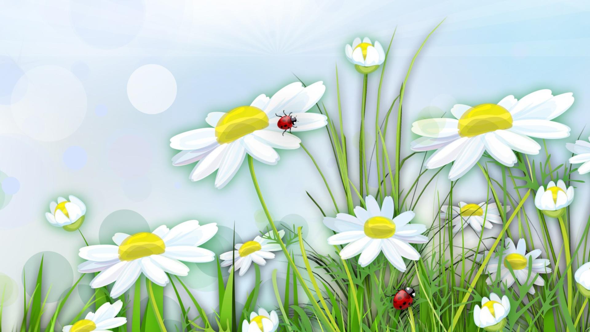 Картинки поле с цветами для детей, ручной работы