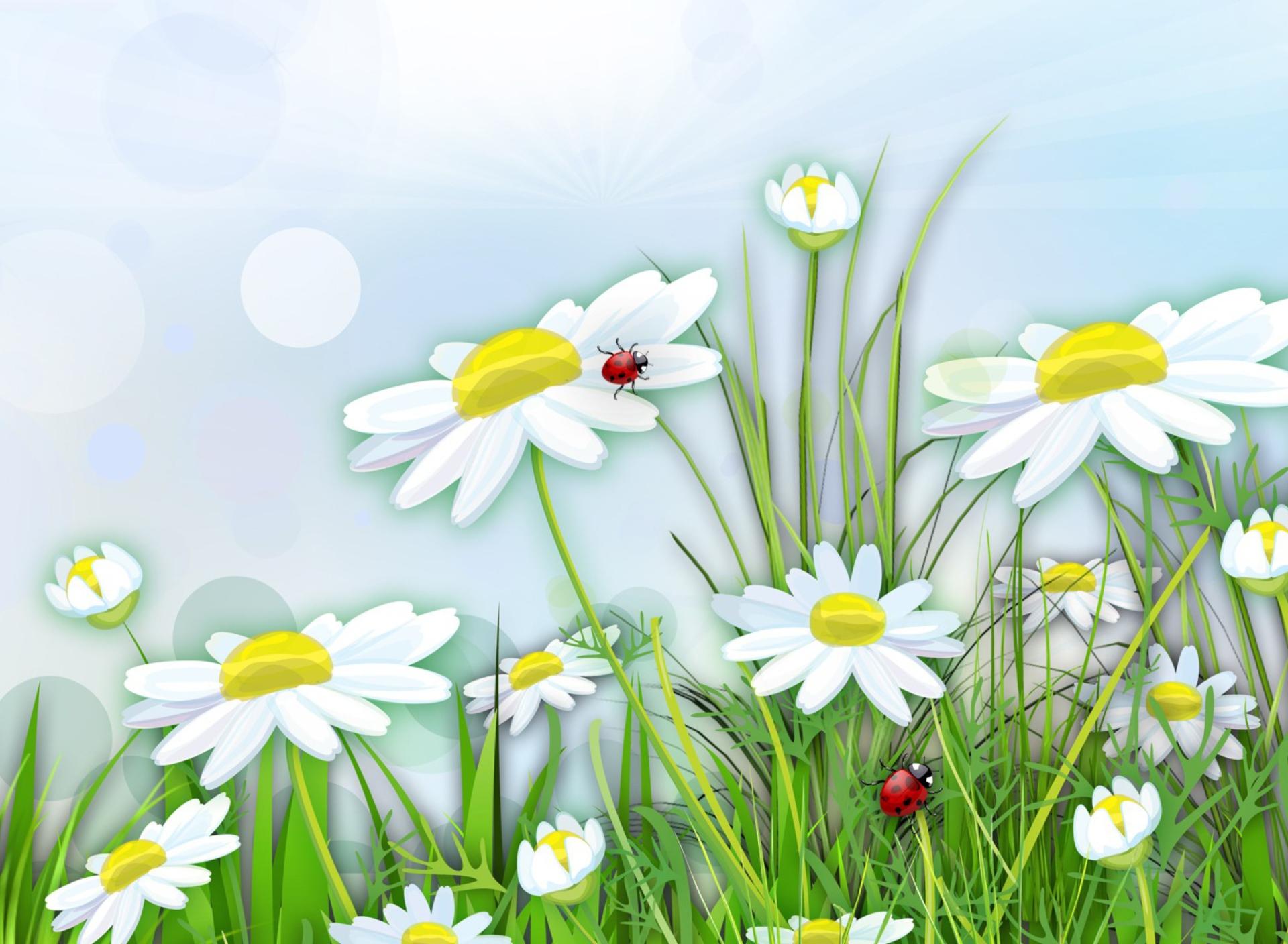 Картинки цветы на поляне для детей, днем рождения годик