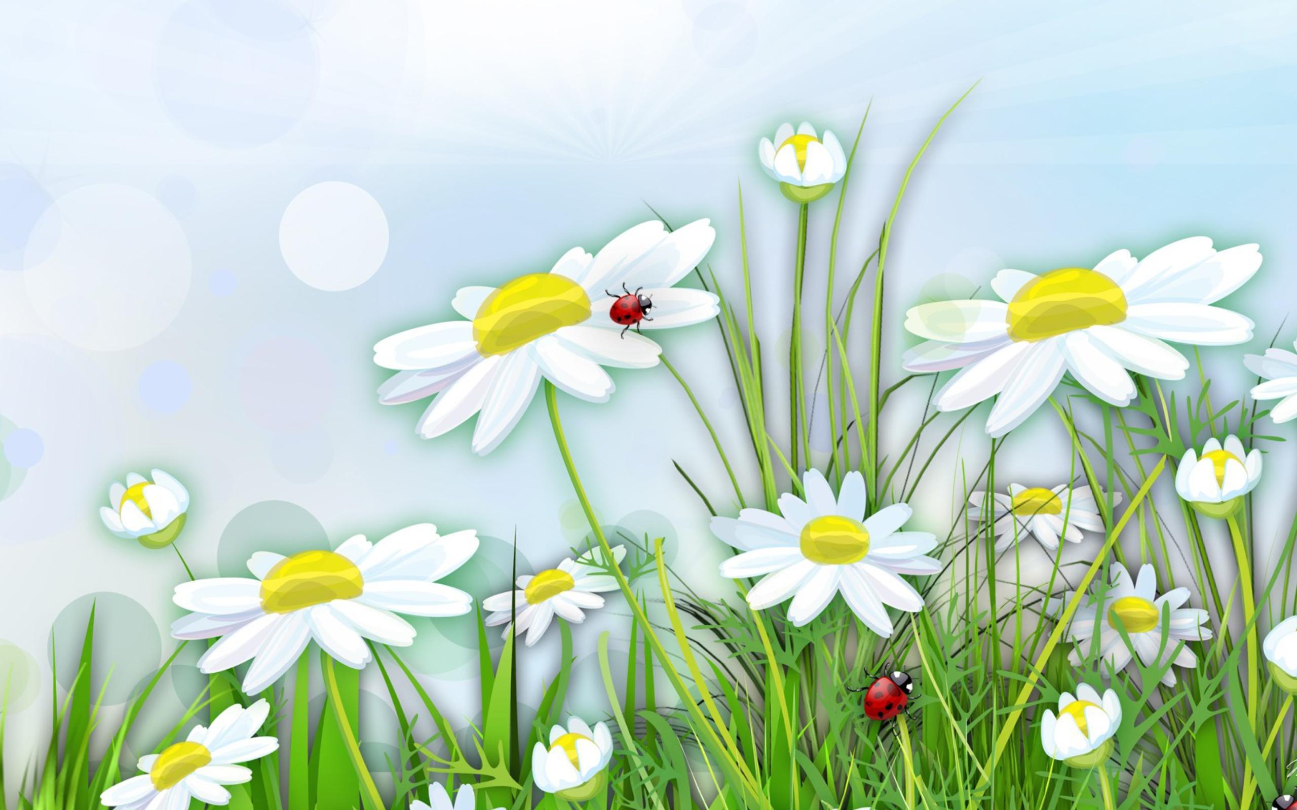 Днем рождения, поляна с цветами картинки рисунок