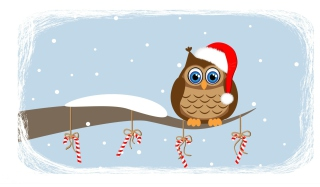 Christmas Owl Background for Android, iPhone and iPad