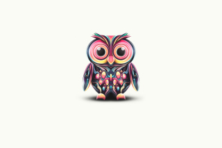 Cute Owl Wallpaper for Samsung I9080 Galaxy Grand