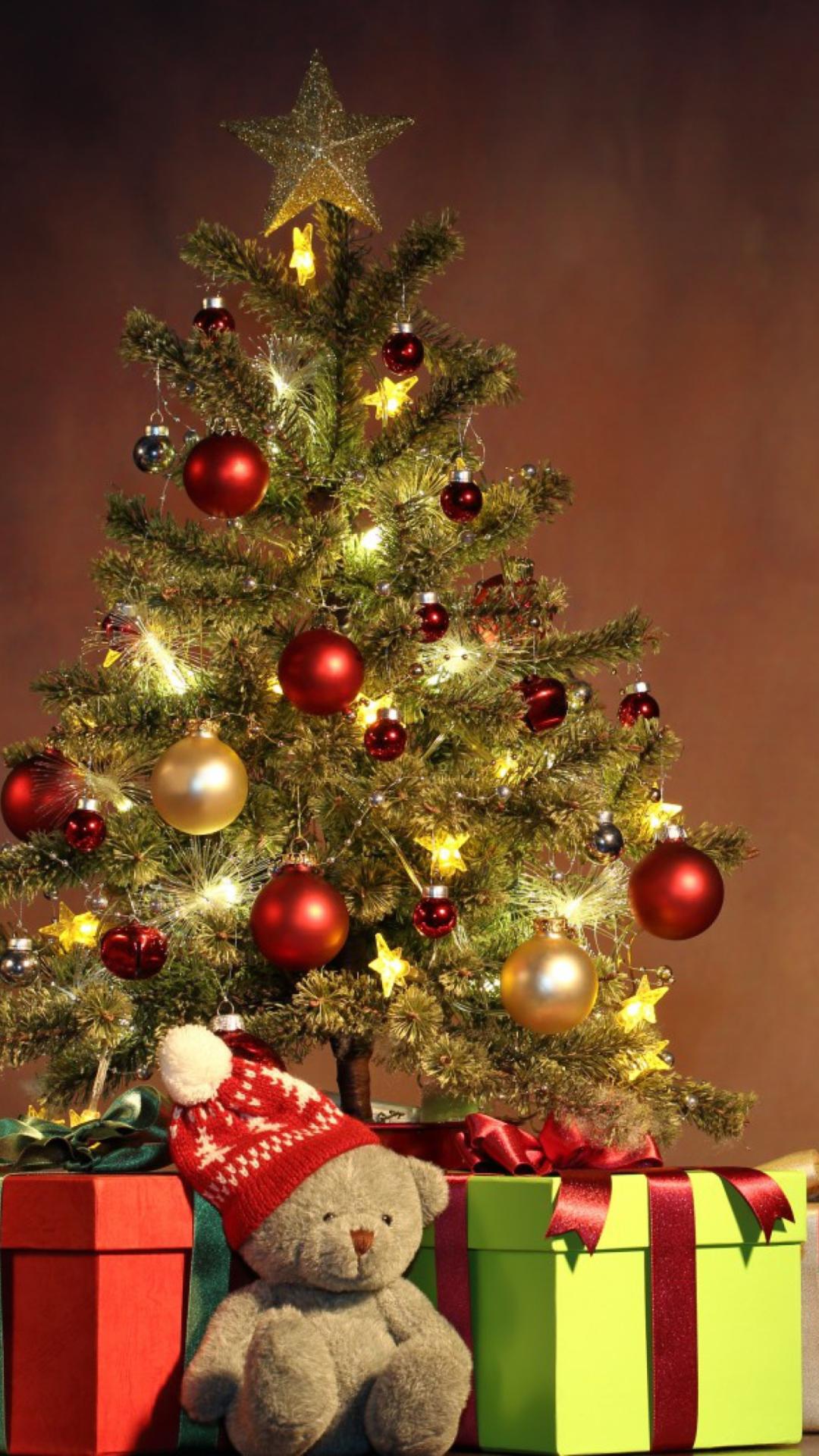 как правильно фото елки новогодней на телефон гиппопотамов это результат
