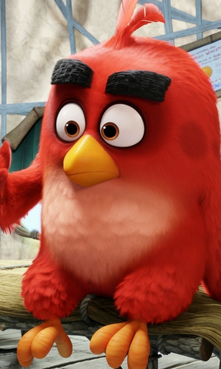 Sfondi Angry Birds Red 768x1280