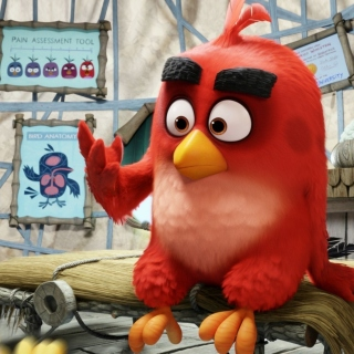 Обои Angry Birds Red на iPad mini 2