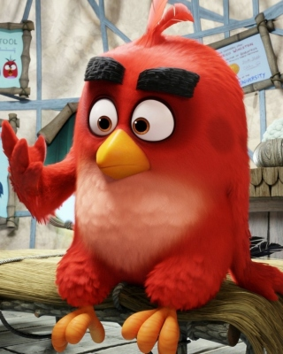 Angry Birds Red Background for iPhone 6 Plus