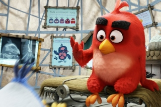 Angry Birds Red Background for Android, iPhone and iPad