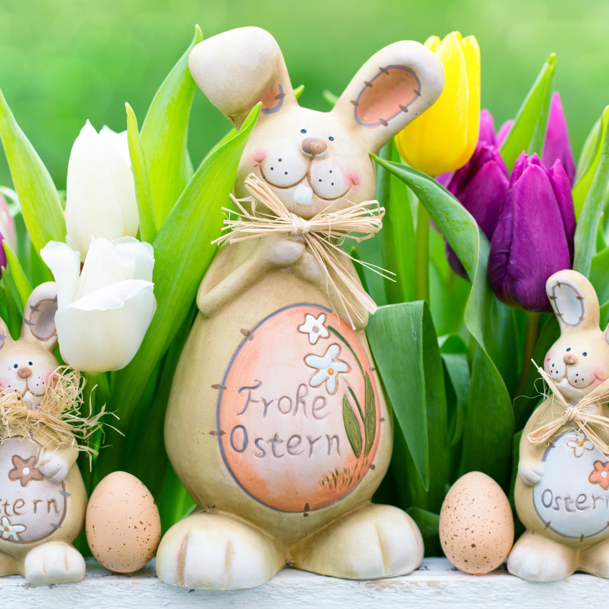 frohe ostern! - HD2048×2048
