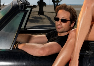 Free Hank Moody Picture for Android, iPhone and iPad