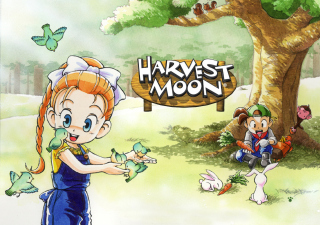 Harvest Moon Friends Background for HTC EVO 4G