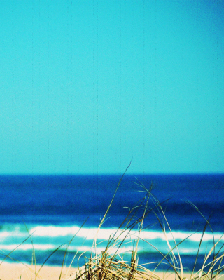 Summer By The Sea - Fondos de pantalla gratis para Nokia 5800 XpressMusic