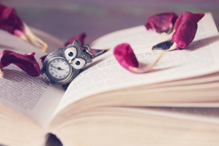 Kostenloses Vintage Owl Watch And Book Wallpaper für Android, iPhone und iPad