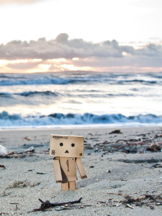 Danbo On The Beach - Obrázkek zdarma pro iPhone 6 Plus
