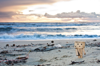 Danbo On The Beach Wallpaper for Android, iPhone and iPad