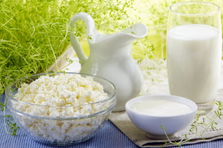 Milk and milk Products - Fondos de pantalla gratis