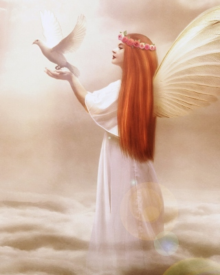 Angel From Dream Wallpaper for Nokia Asha 308